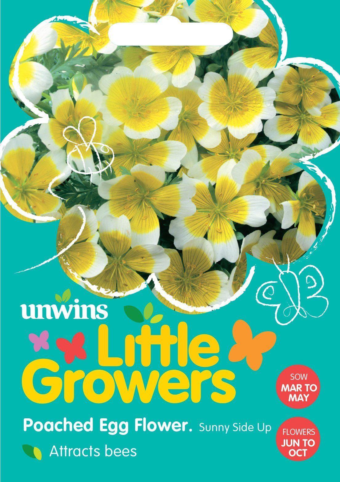 Little Growers Poached Egg Flower Sunnyside