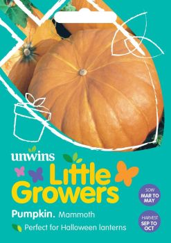 Little Growers Pumpkin Mammoth