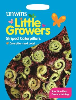 Little Growers Striped Caterpillars