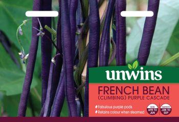 French Bean (Climbing) Purple Cascade