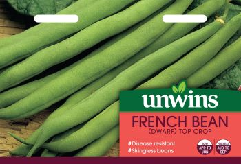 French Bean (Dwarf) Top Crop