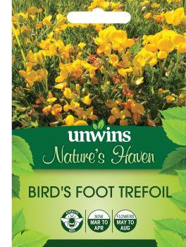 NH Birdsfoot Trefoil