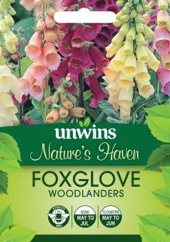 NH Foxglove Woodlanders