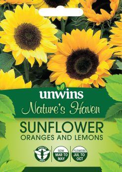 NH Sunflower Oranges and Lemons