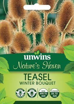 NH Teasel Winter Bouquet