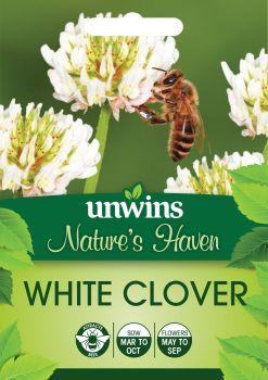 NH White Clover