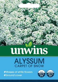 Alyssum Carpet Of Snow