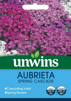 Aubrieta Spring Cascade