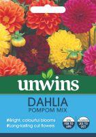 Dahlia Pompom Mix