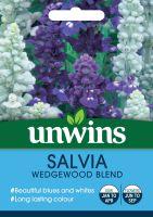 Salvia Wedgewood Blend