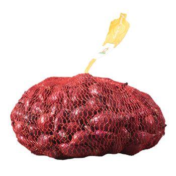 Onion Sets-Red Carmon