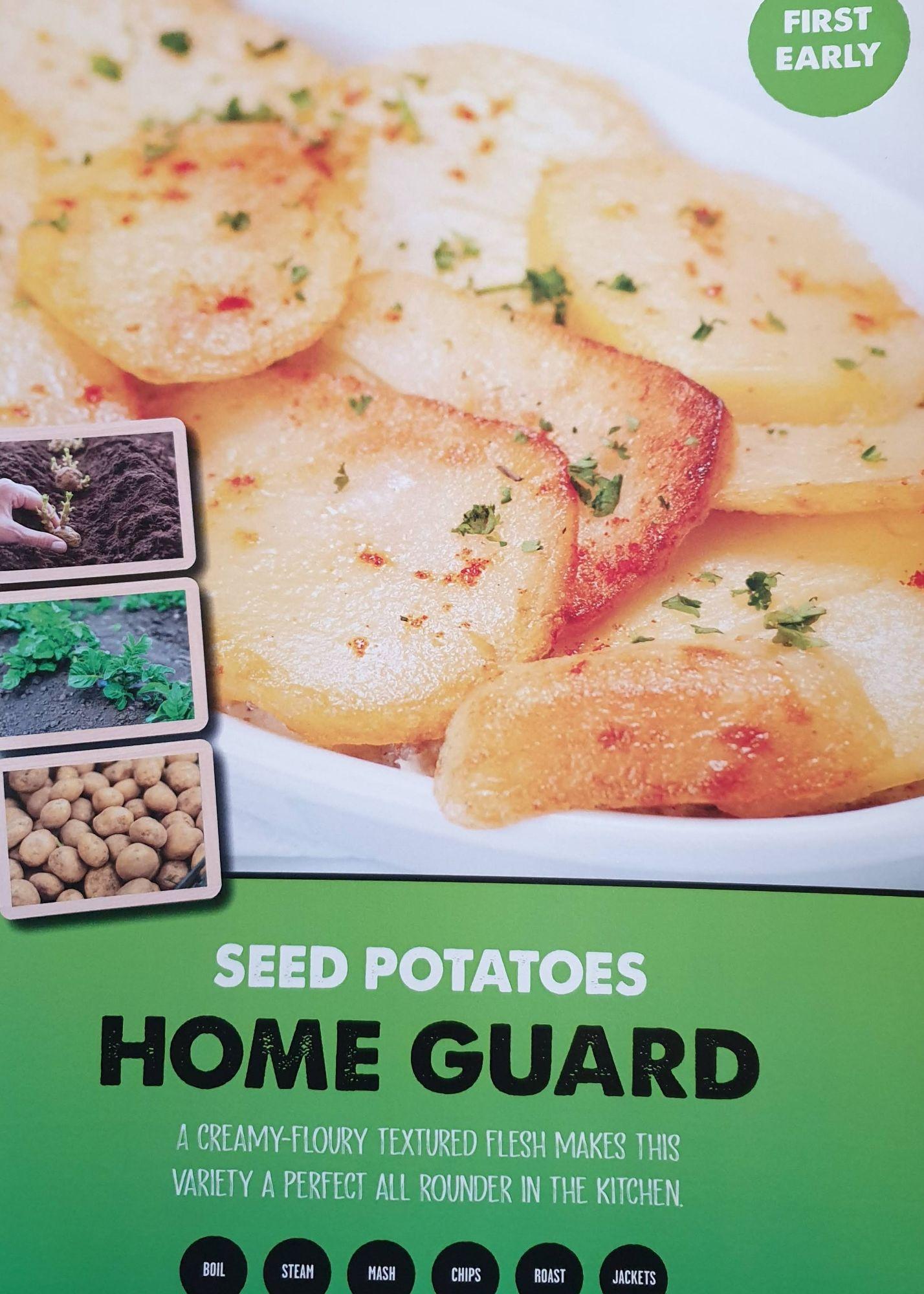 home_gueard_seed_potato_info.jpg
