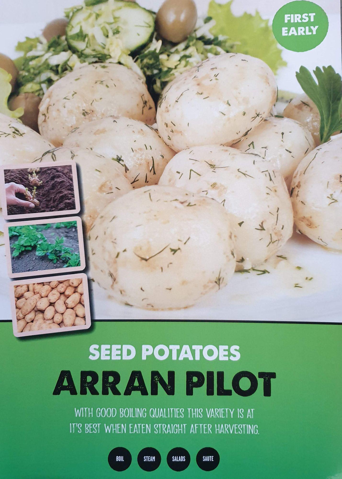arran_pilot_seed_potato_info.jpg