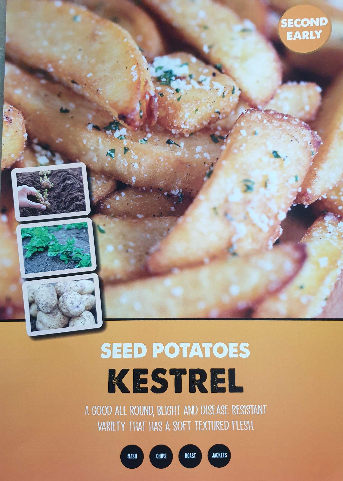 kestrel_seed_potato_info.jpg