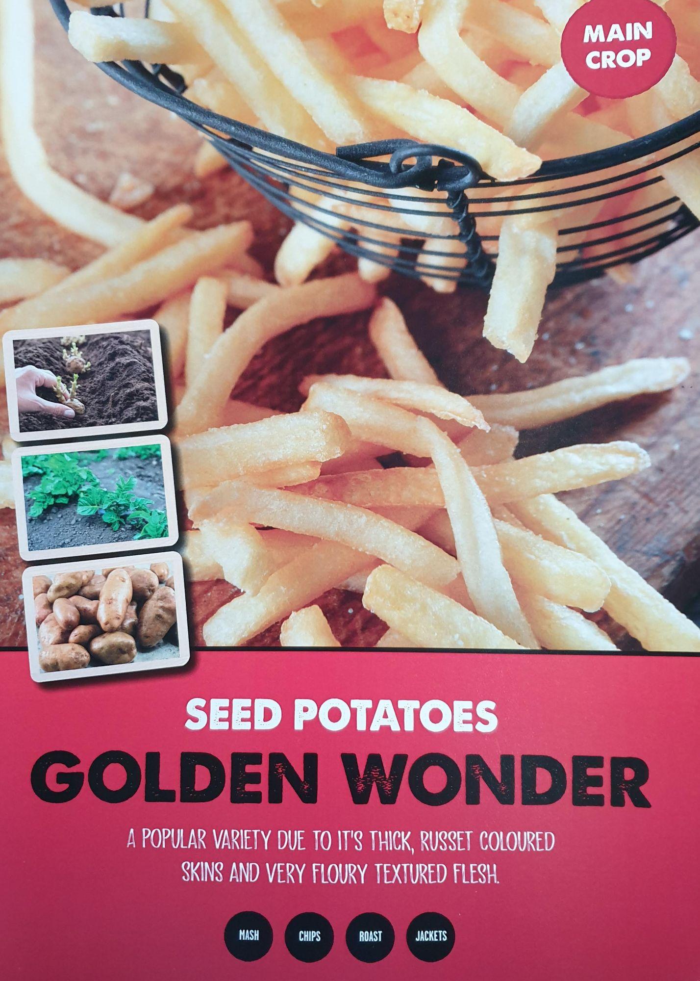 golden_wonder_seed_potato_info.jpg