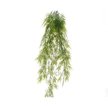 Bamboo - plastic