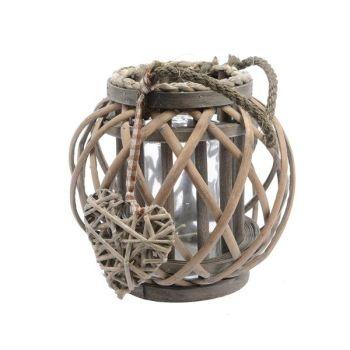 Lantern willow brown