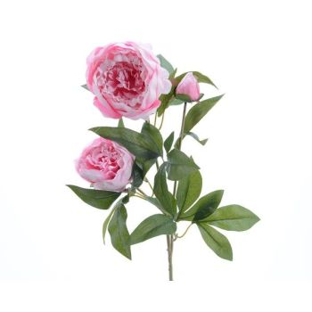 PEONY ROSE light pink