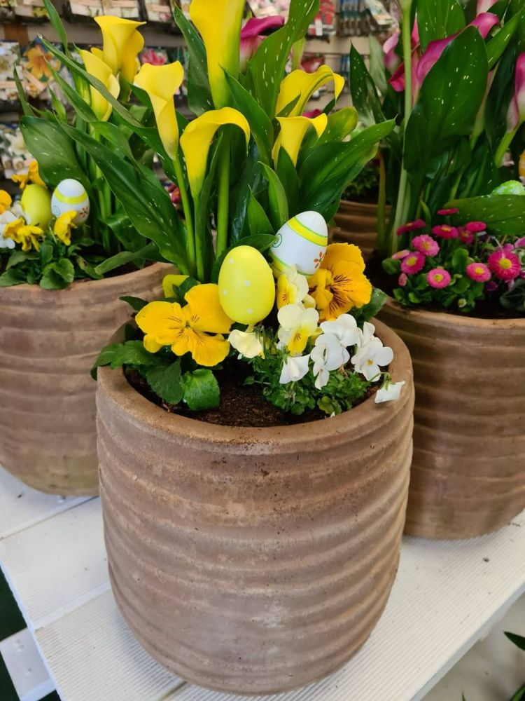 EASTER PLANTED POT