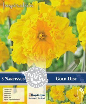 NARCISSUS COLLAR GOLD DISC