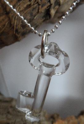 <!--003-->The Secret Pendant