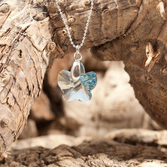 papillion bleu 2