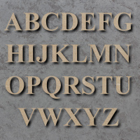 Times New Roman Bold Font Single mdf Wooden Letters  **PRICE PER LETTER**