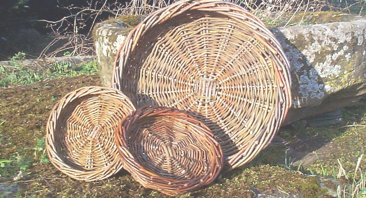 Basket Making Workshop: Fruit Basket