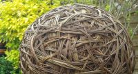 <!-- 048 --> Willow Sphere Sculpture Workshop - Sunday 22nd July 2018