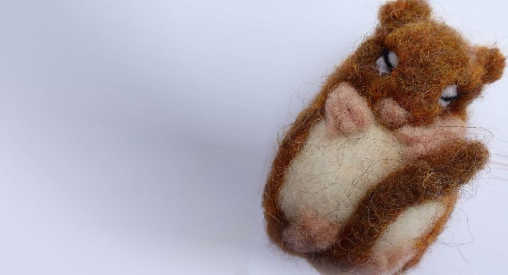 <!-- 041 --> Dormouse Needle Felting Workshop - Sunday 17th June 2018