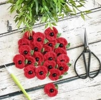 Poppy Brooch - Red