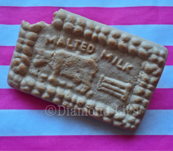 Malted Milk Biscuit Brooch