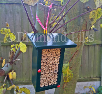 Insect House/Bug Hotel (Green)