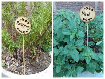 Wooden Name/Plant Labels - 28 x 5cm - Pack of 5