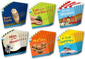 Floppy's Phonics Non-Fiction Stories Level 3 - Assorted - Class Pack of 36