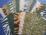 Safari Print Paper - Assorted - 215 x 279mm - Pack of 24