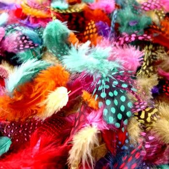 Coloured Spotted Feathers - Assorted -  28g