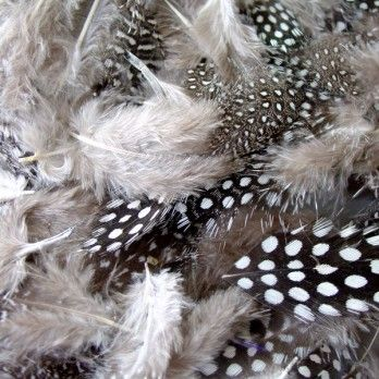 Monochrome Spotted Feathers - Assorted - 28g