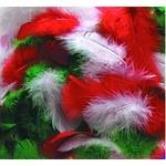 Feathers - Christmas - Assorted - 14g - Each