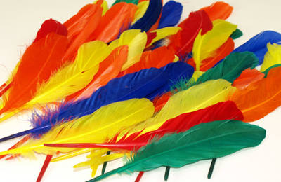 Duck Quill Feathers - Assorted - 20g