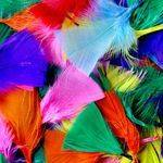 Feathers - Small - Assorted - 30g - Each