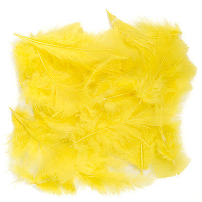Feathers - Yellow - 25g