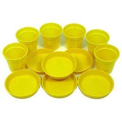 Plastic Flower Pots & Saucers - Pack of 6
