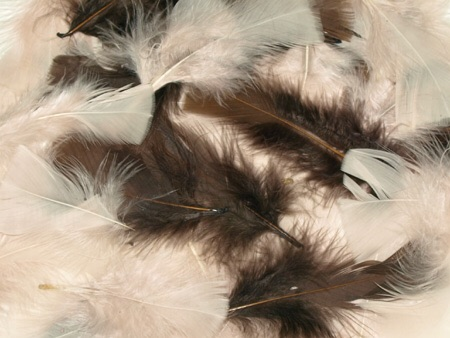 Feathers - Natural - 25g