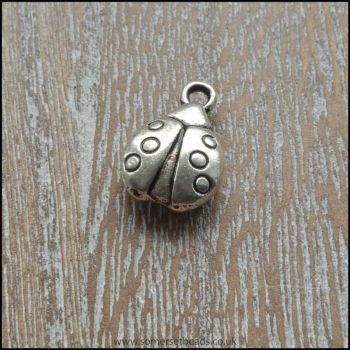 Silver Ladybird Charm