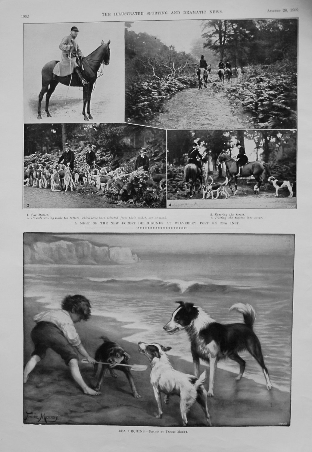 Meet of the New Forest Deerhounds at Wilverley Post. 1909