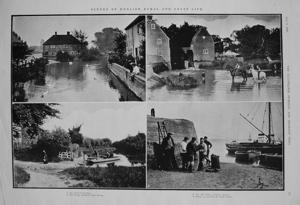 Scenes of English Rural and Coast Life. 1909