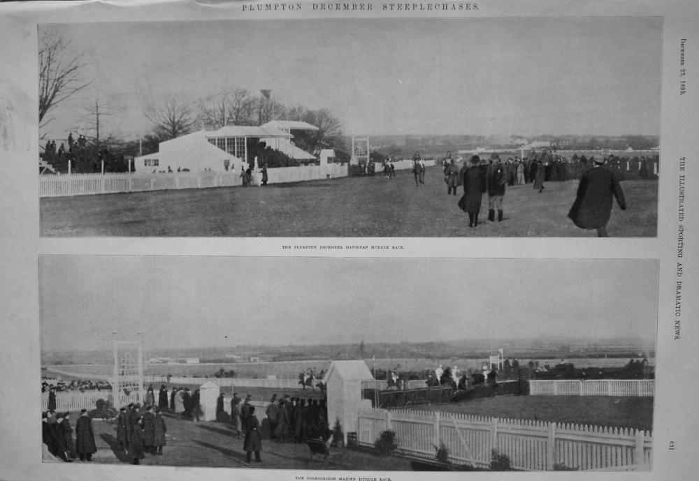 Plumpton December Steeplechases. 1899