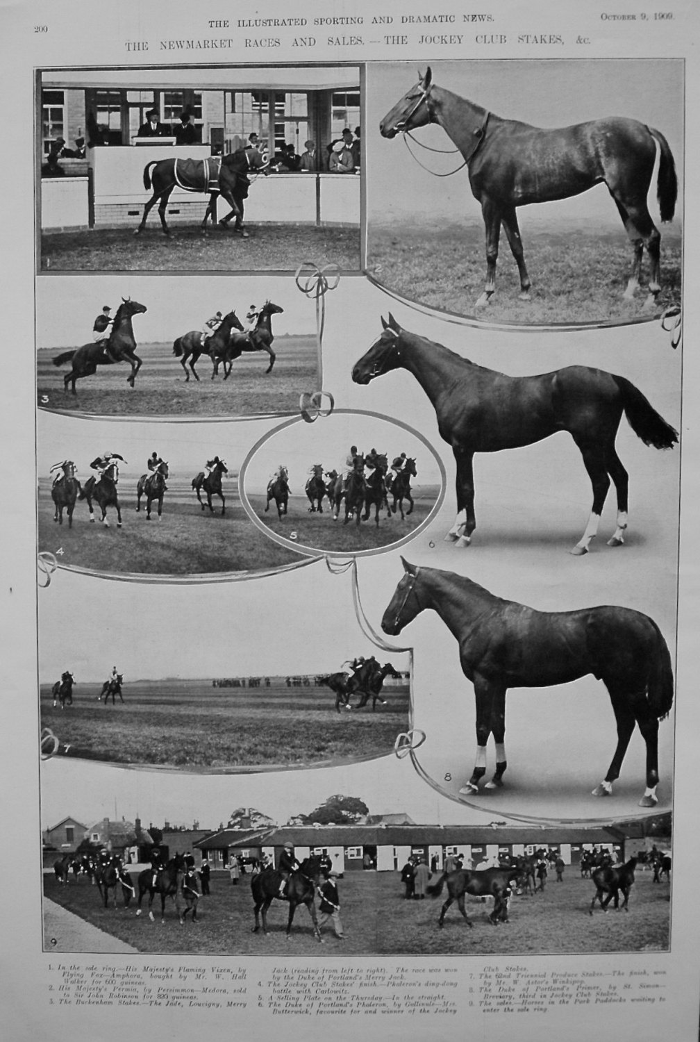 Newmarket Races and Sales. - The Jockey Club Stakes, &c. 1909