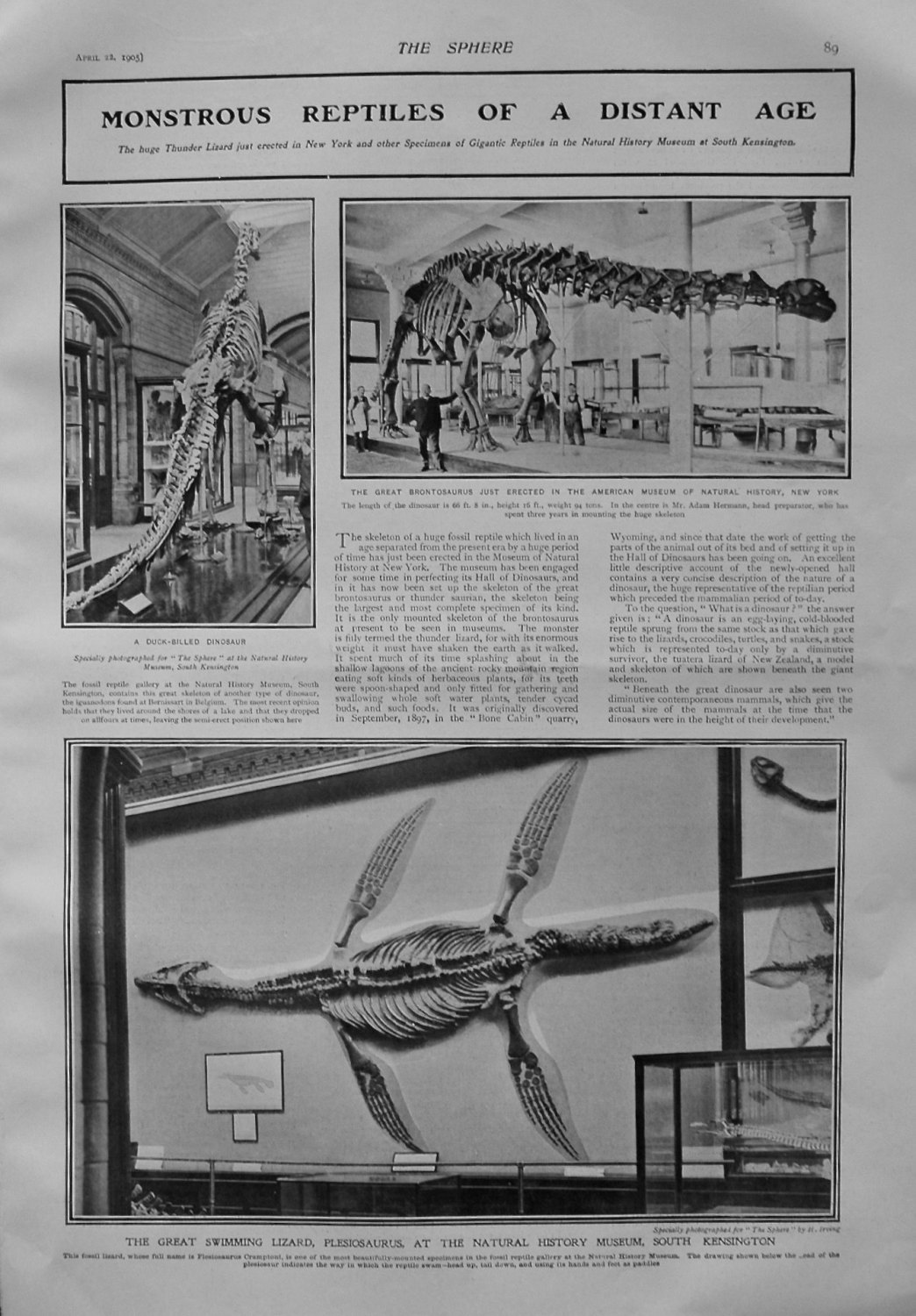 Monstrous Reptiles of a Distant Age. 1905